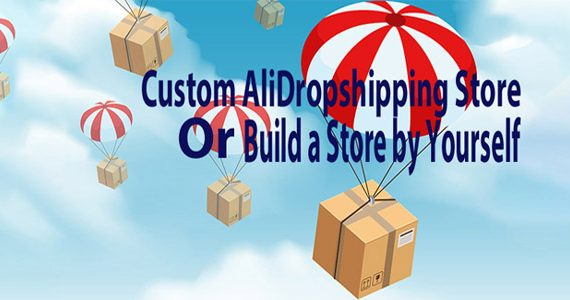 Custom Or Build a Dropshipping Store by Yourself